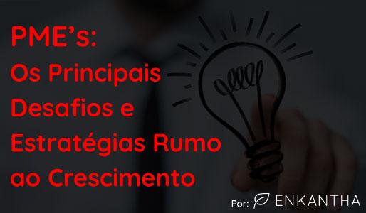 PME'S E OS PRINCIPAIS DESAFIOS E ESTRATÉGIAS RUMO AO CRESCIMENTO